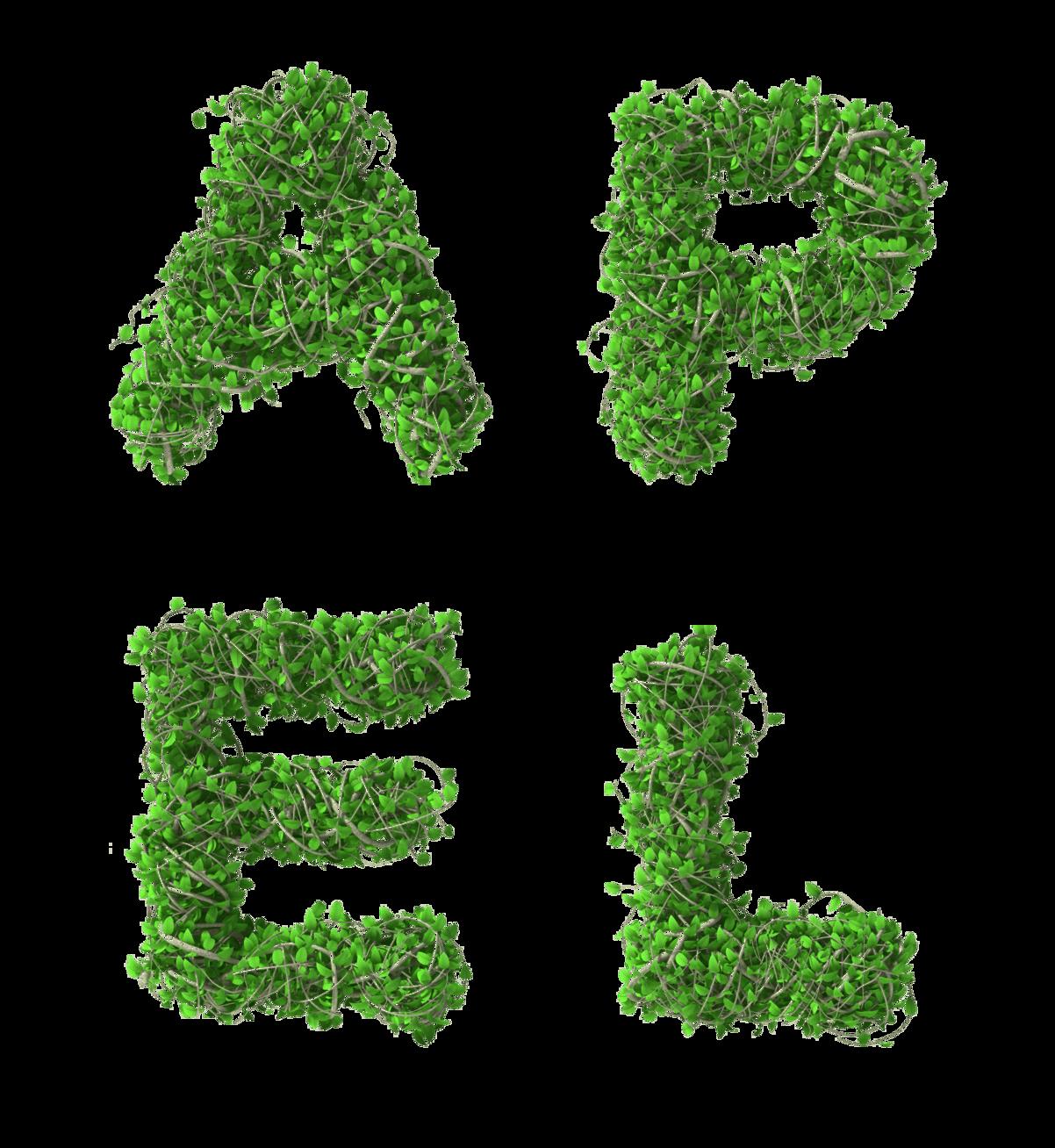 Apel in grünem Busch geschrieben - Altenheime Apel betreiben 5 Einrichtungen für Altenpflege & Seniorenbetreuung in Geesthacht, nähe Hamburg